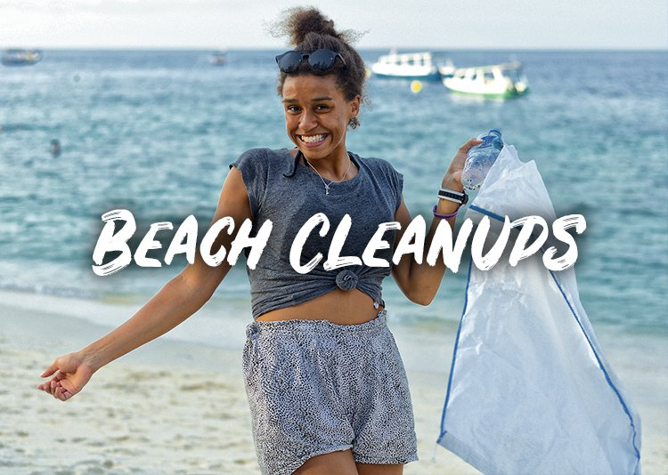 Beach Cleanups In Thailand INTRO Travel