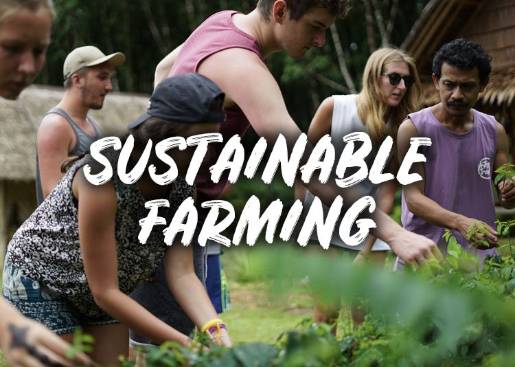 Small Change Sustainable Farming