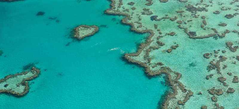 Whitsundays Selector Oz Packages